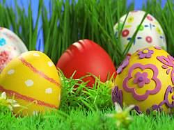 Яйца будут те же, что и сбоку